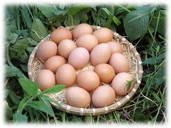 料理に使う卵はSサイズがお得な裏ワザ!